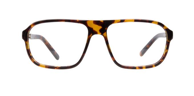 product image of JK London Streatham Tortoiseshell