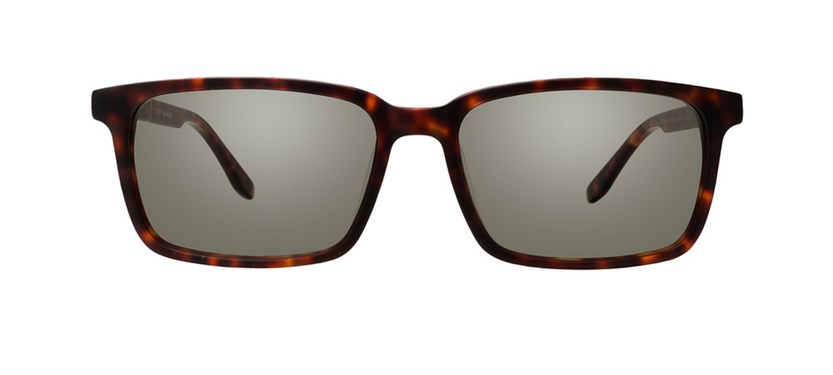 product image of Joseph Marc Beechey-54 Warm Tortoise
