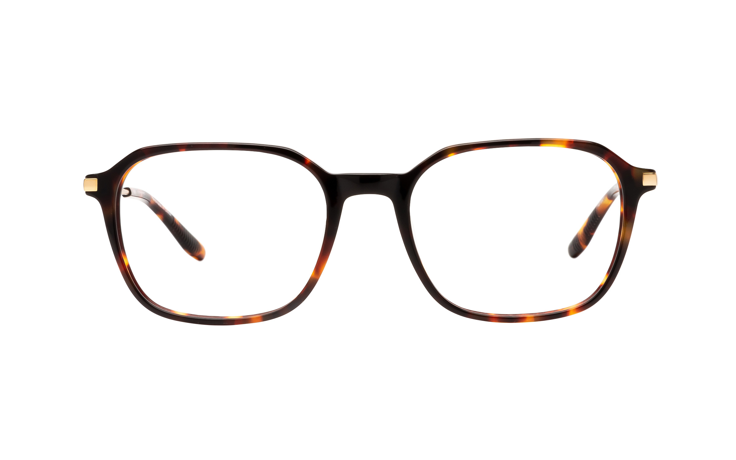 Joseph Marc Carter (52) Eyeglasses and Frame in Havana Tortoise/Brown | Acetate/Metal
