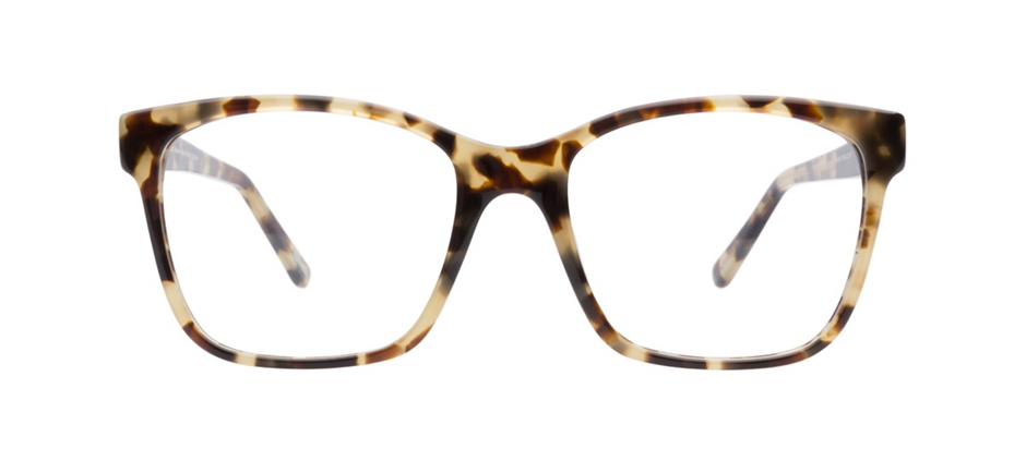 product image of Kam Dhillon Stephanie Tokyo Tortoise