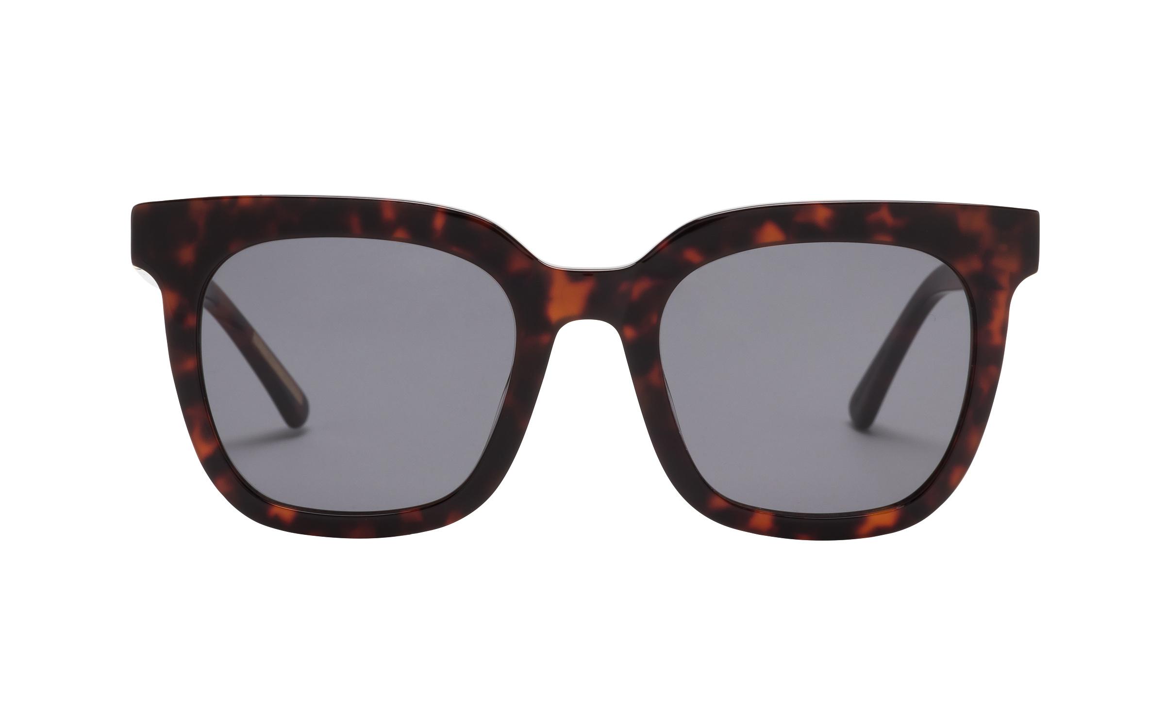 D-Frame Sunglasses Tortoise Kam Dhillon Online Coastal