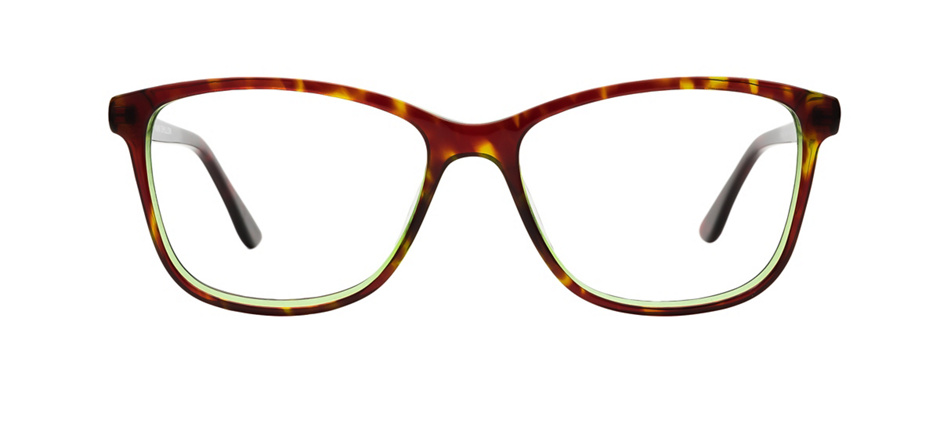 product image of Kam Dhillon Dinah-53 Green Tortoise