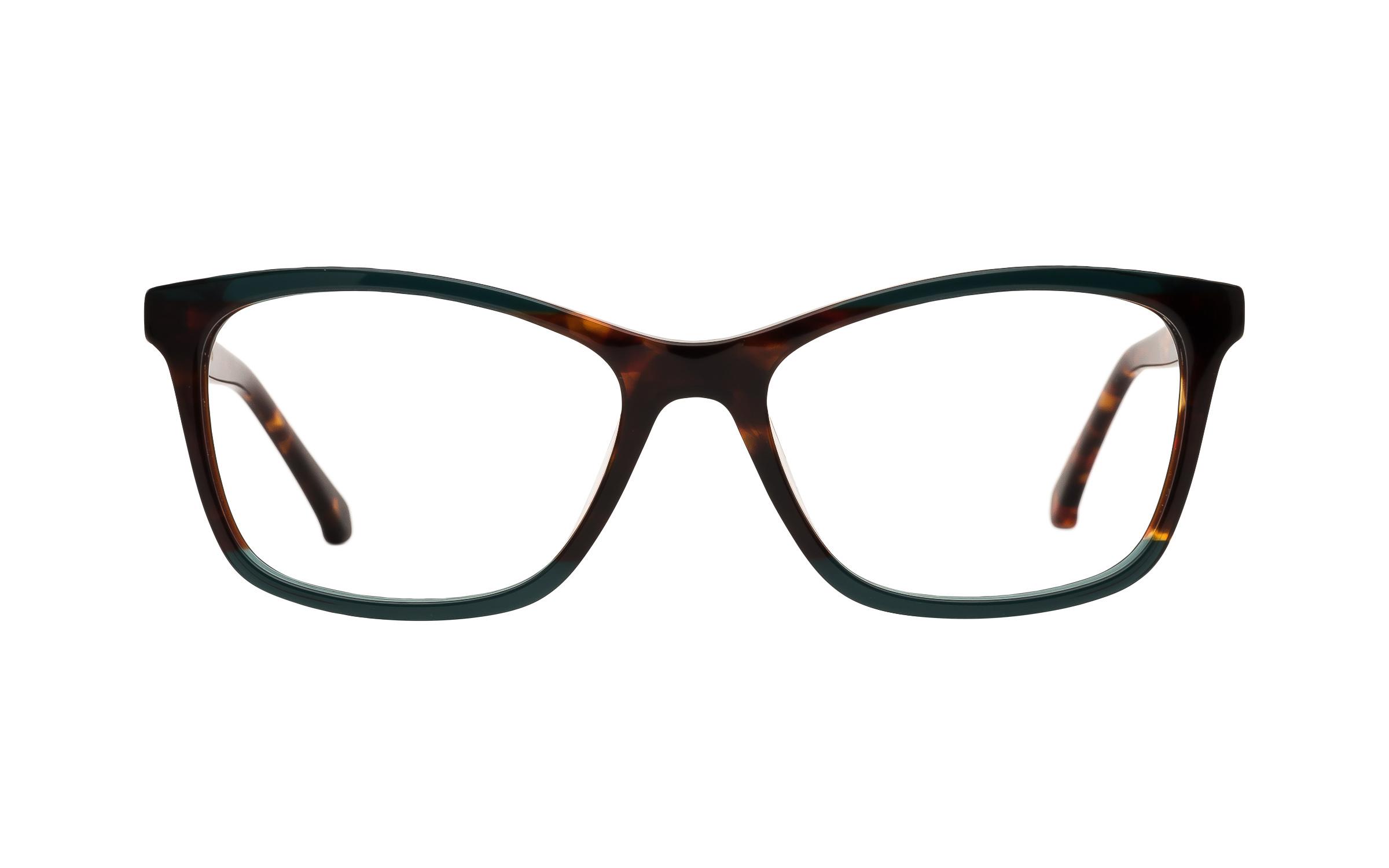 Kam Dhillon Women's Glasses D-Frame Green/Tortoise Acetate Online Coastal