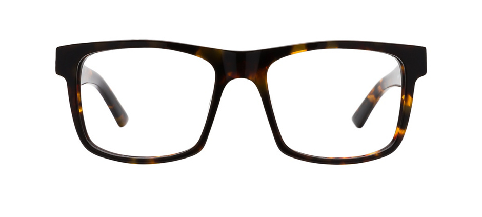 product image of Kam Dhillon Greenwich-52 Tortoise