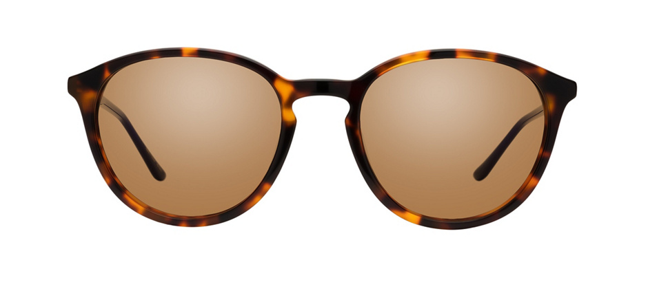 product image of Kam Dhillon Gwendolyn-51 Tortoise