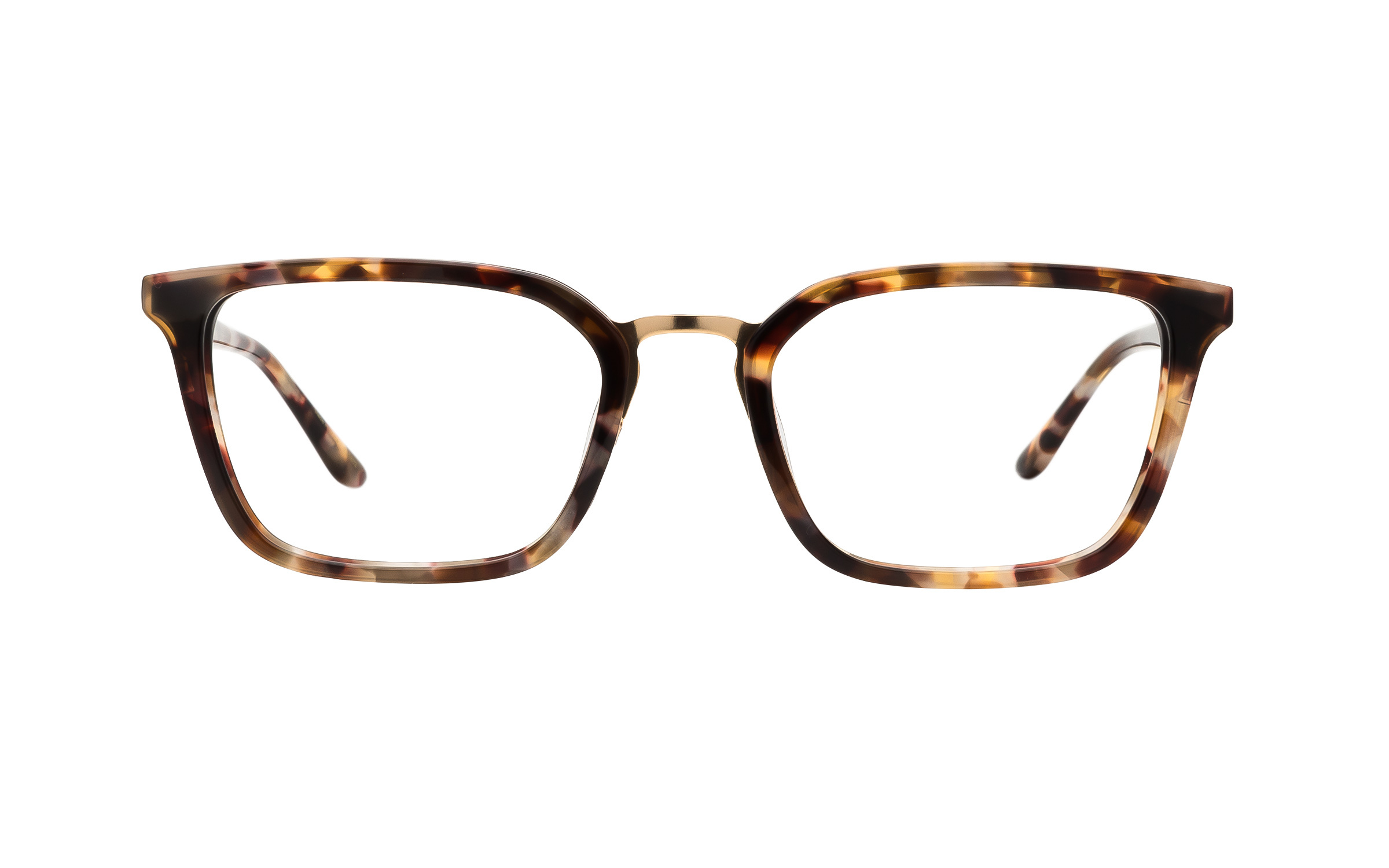 Kam Dhillon Women's Glasses Brown/Tortoise Acetate/Metal Online Clearly