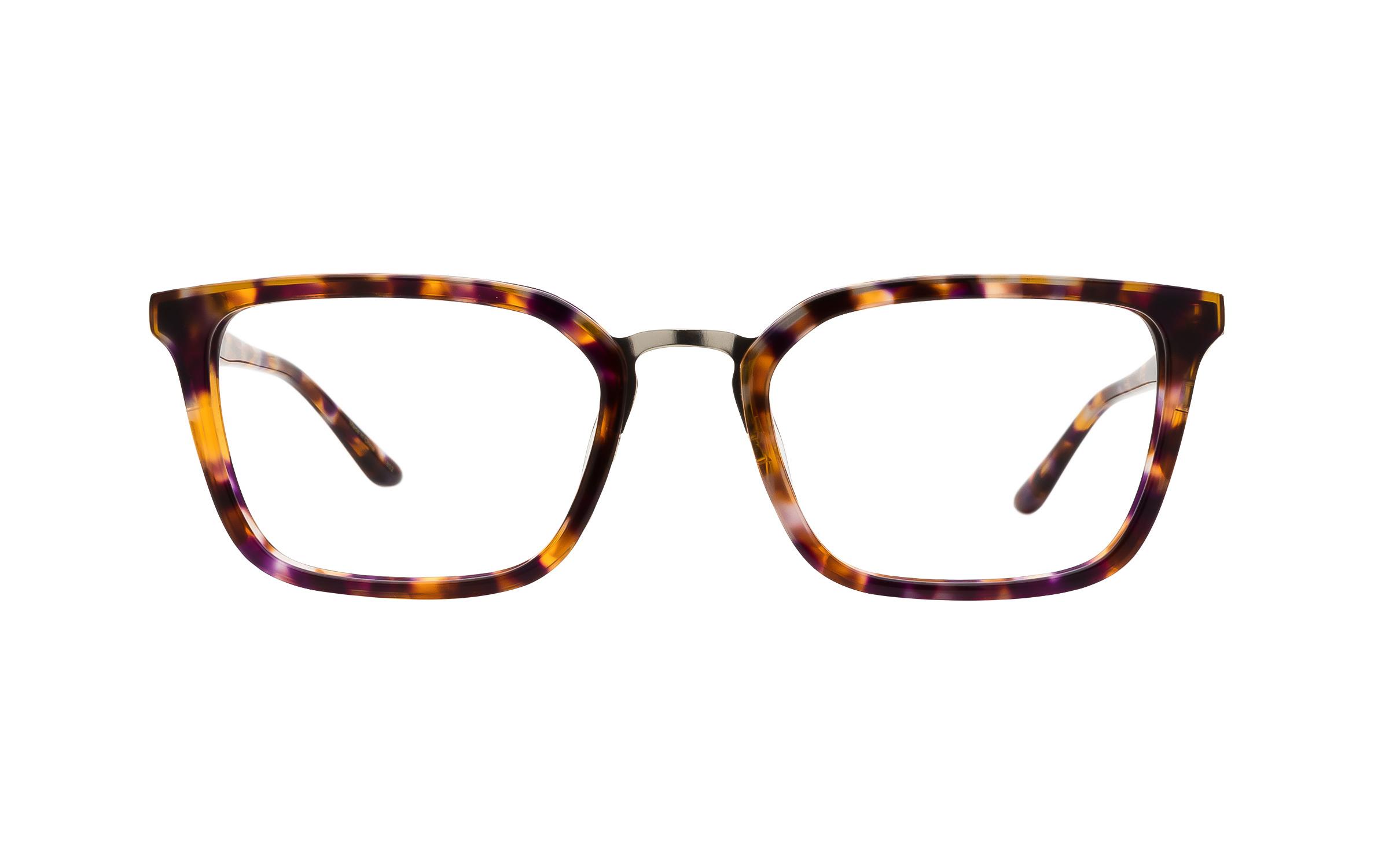 Kam Dhillon Women's Glasses Brown/Purple/Tortoise Acetate/Metal Online Coastal