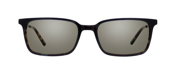 product image of Main And Central Avondale-54 Sea Tortoise