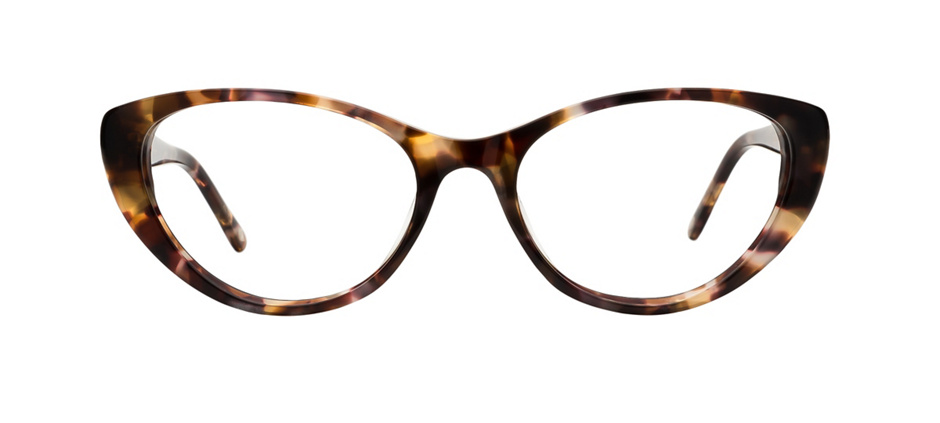 product image of Main And Central Memphis-52 Marbled Tortoise