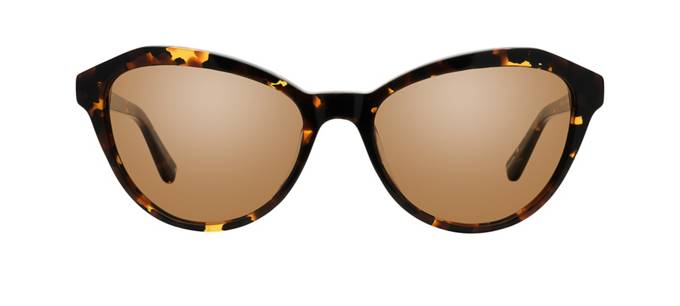 product image of Main And Central Mission Hill-54 Golden Tortoise