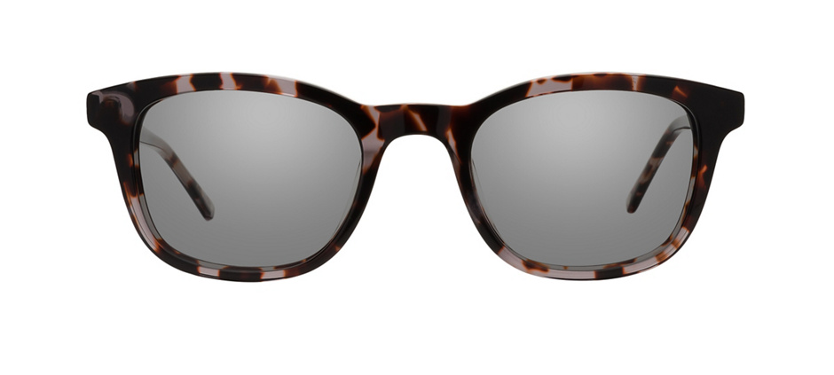 product image of Main And Central Morgan Park-50 Cool Tortoise