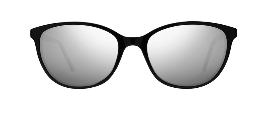 product image of Main And Central Queensland-52 Black Tortoise