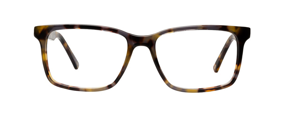 product image of Main And Central Rockhampton-53 Yellow Tortoise