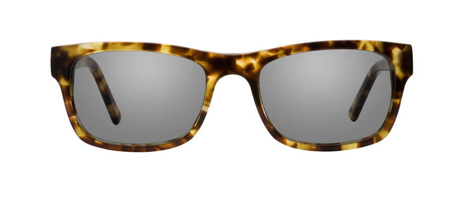product image of Main And Central Springfield-52 Écailles de tortue brunes
