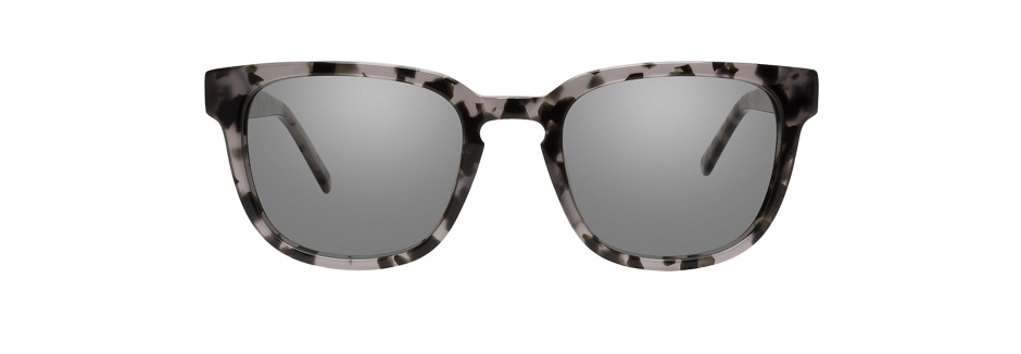 product image of Main And Central Wednesday-M Smoky Tortoise