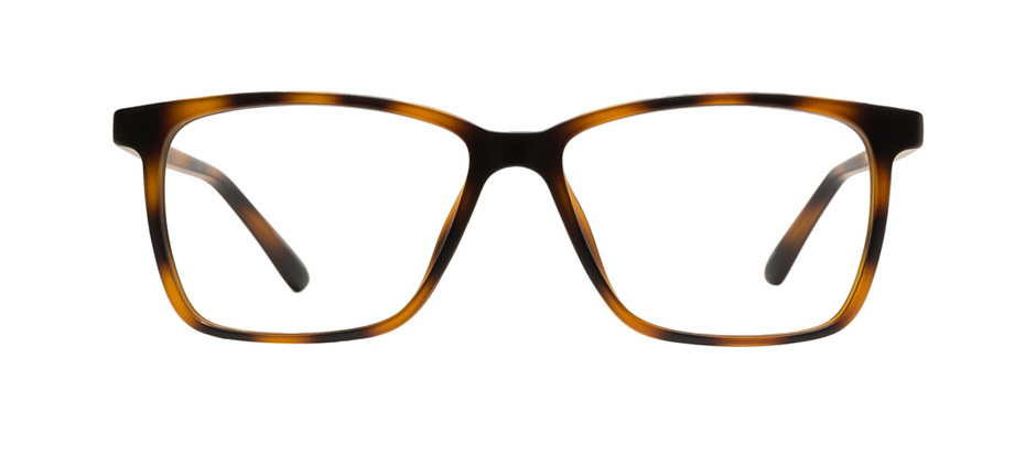 product image of Mainstay FNDTN013-53 Tortoise