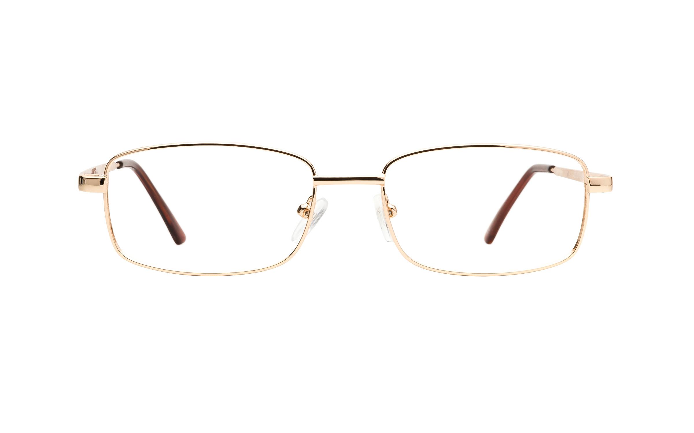 Matrix 216 (52) Eyeglasses and Frame in Gold | Metal - Online