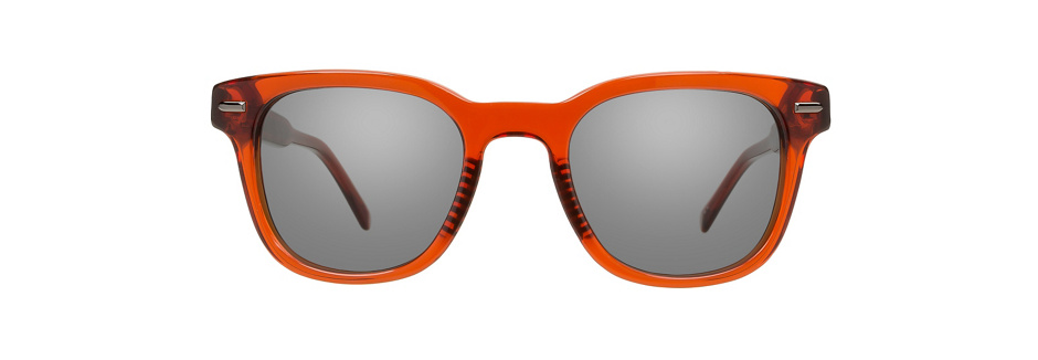 product image of Penguin The Stanley 48 Tortoise