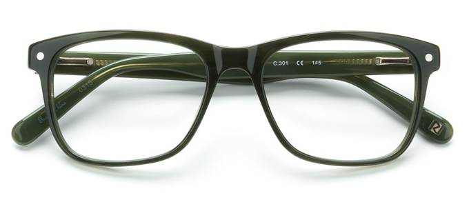 product image of Randy Jackson RJ3020 Olive