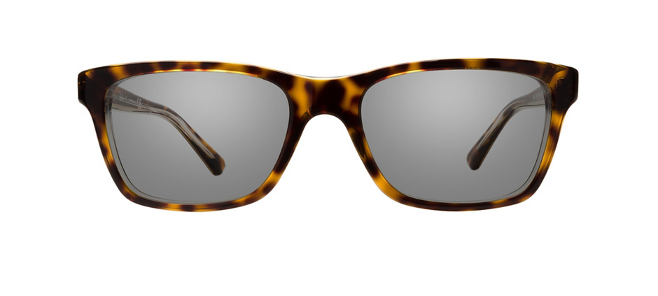 product image of Ray-Ban Junior RB1536-48 Dark Havana