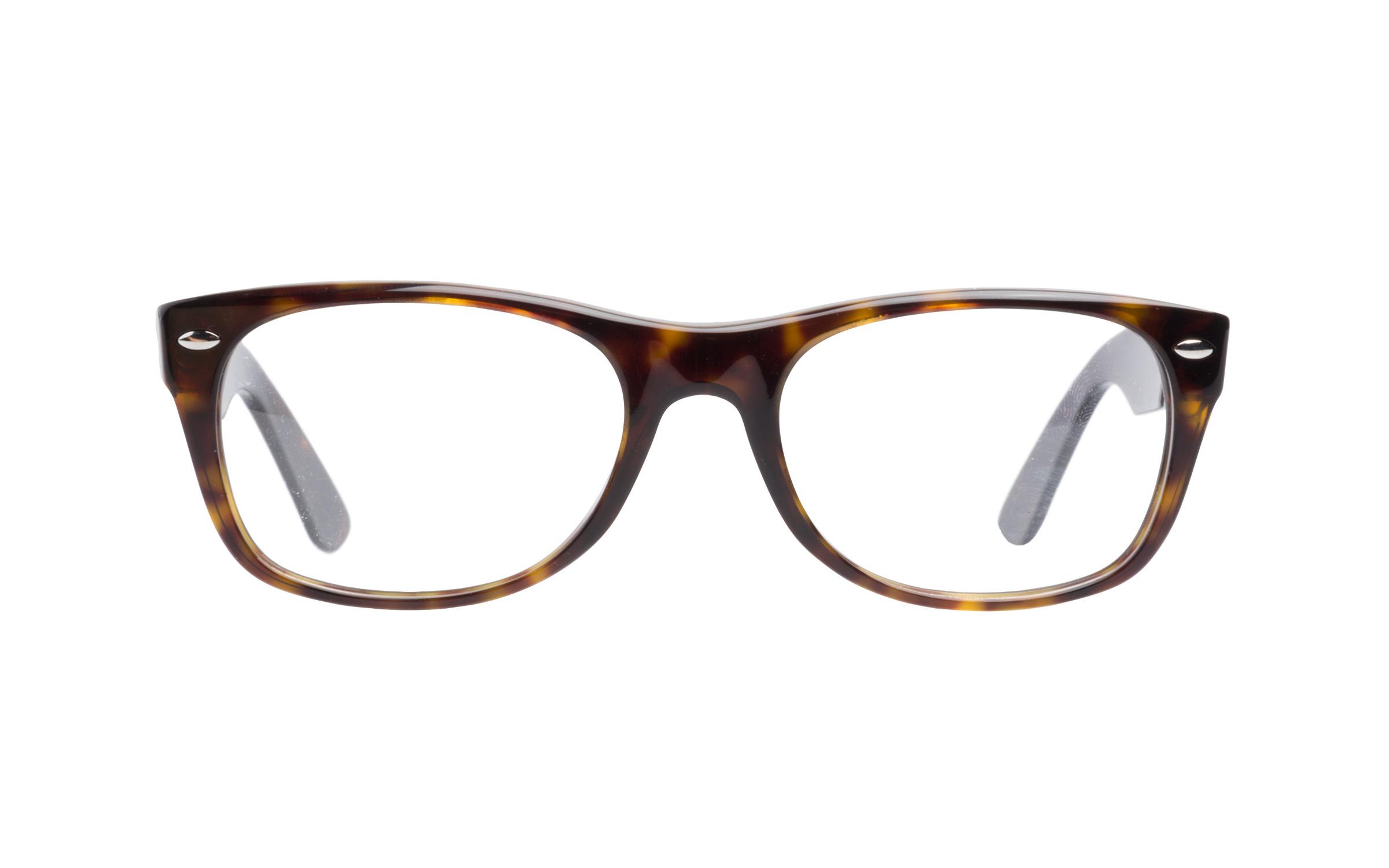 Ray-Ban Glasses Classic Brown/Tortoise Acetate Online Coastal