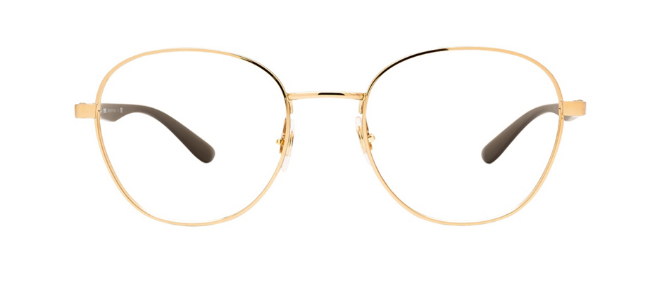 product image of Ray-Ban RX6461-51 Arista