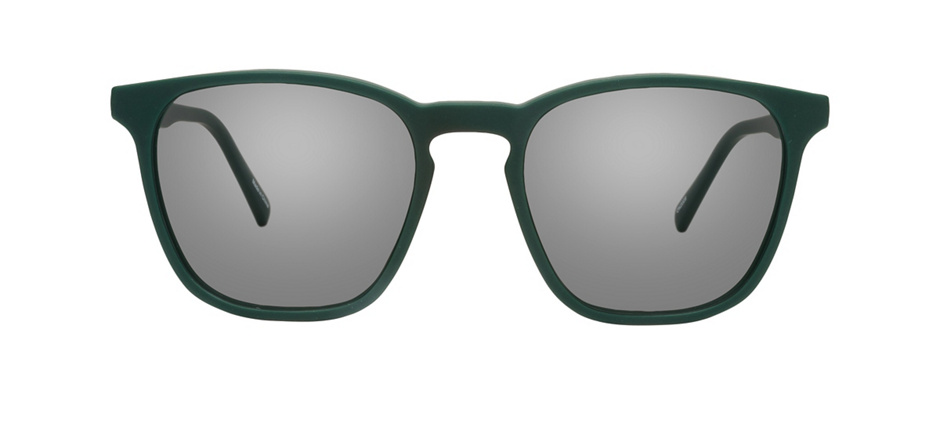 product image of Reincarnate Pitta-51 Green