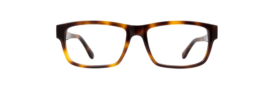 product image of Salvatore Ferragamo SF2676-55 Havana Black