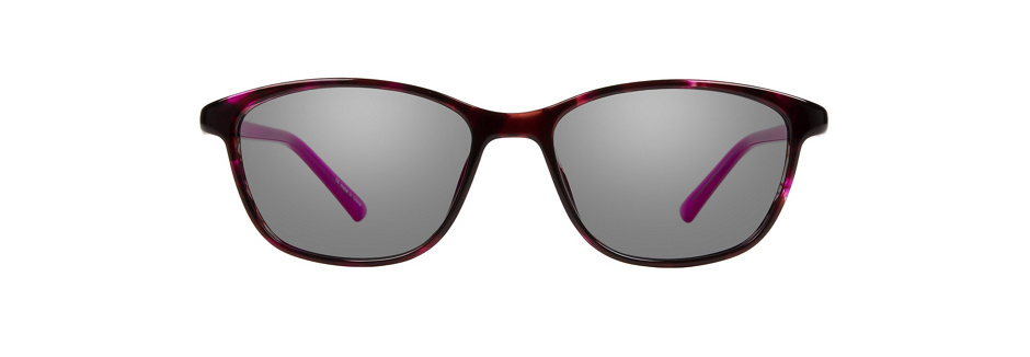 product image of Visions 226-50 Purple