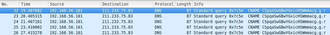 PCAP of DNS queries as Command and Control