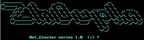 "NetC 1.0 ASCII Art ""Zh0up!n"""