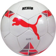 Puma Elite 2 Match Soccer Ball