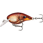 Rapala DT (Dives-To) Series Crankbait