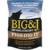 Big & J Pigs-Dig-It Granular Attractant