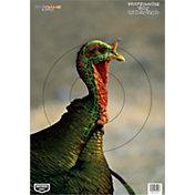 Birchwood Casey PREGAME Turkey Target