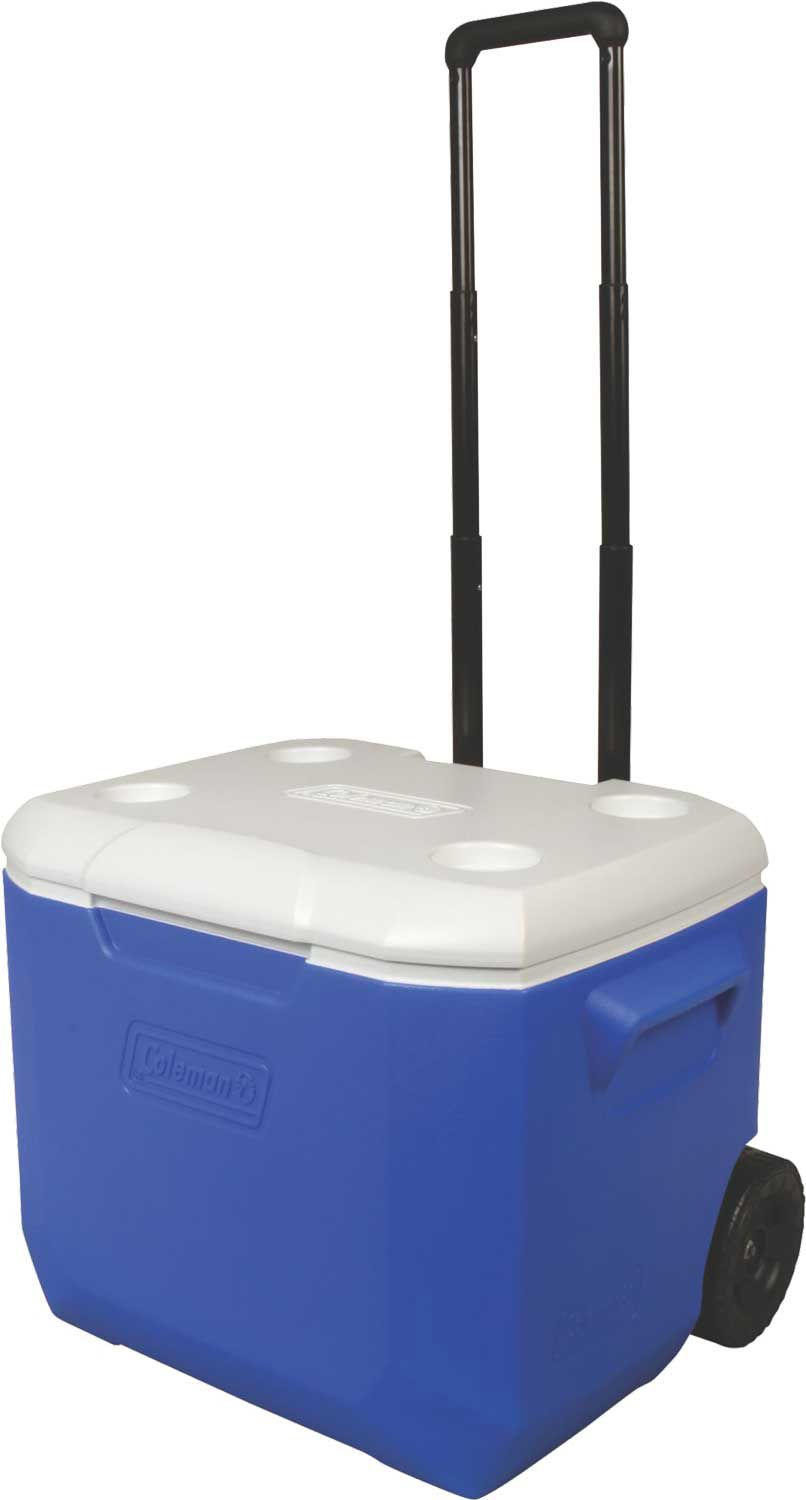 Igloo Maxcold Cooler 150 Qt Dimensions Igloo Multiple