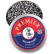 Crosman Hollow Point .22 Caliber Pellets - 500 Count