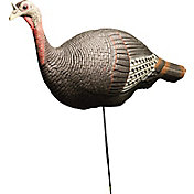 Lodge Outfitters Foam Upright Hen Turkey Decoy