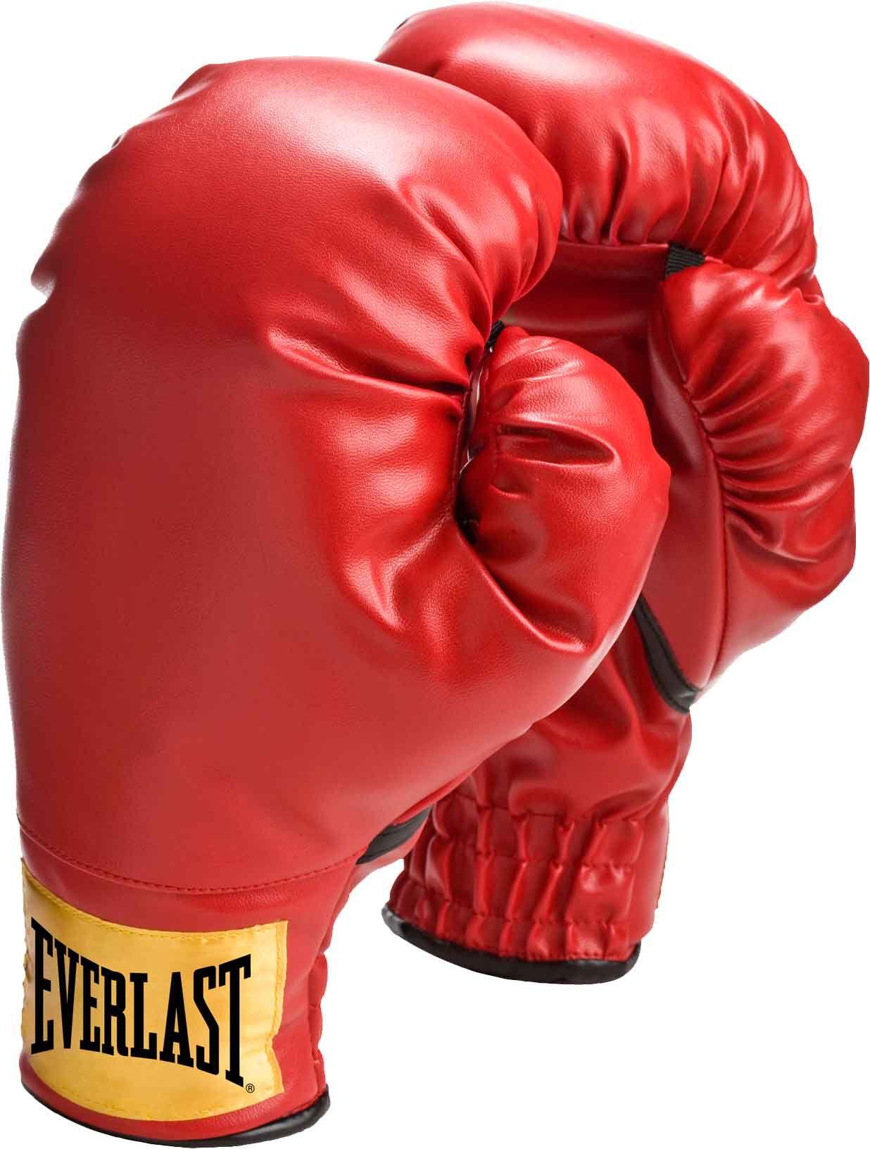 Shiv Naresh Teens Boxing Gloves 12oz: Everlast Youth Boxing Gloves