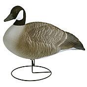 Flambeau Standard Full Body Canada Goose – 6 Pack