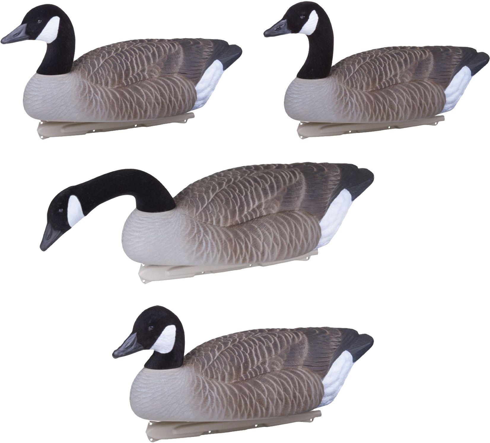 canada goose jacka rea 70