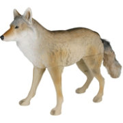 Flambeau Master Series Flocked Lone Howler Coyote Decoy