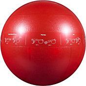 GoFit Pro Ball– 55 cm