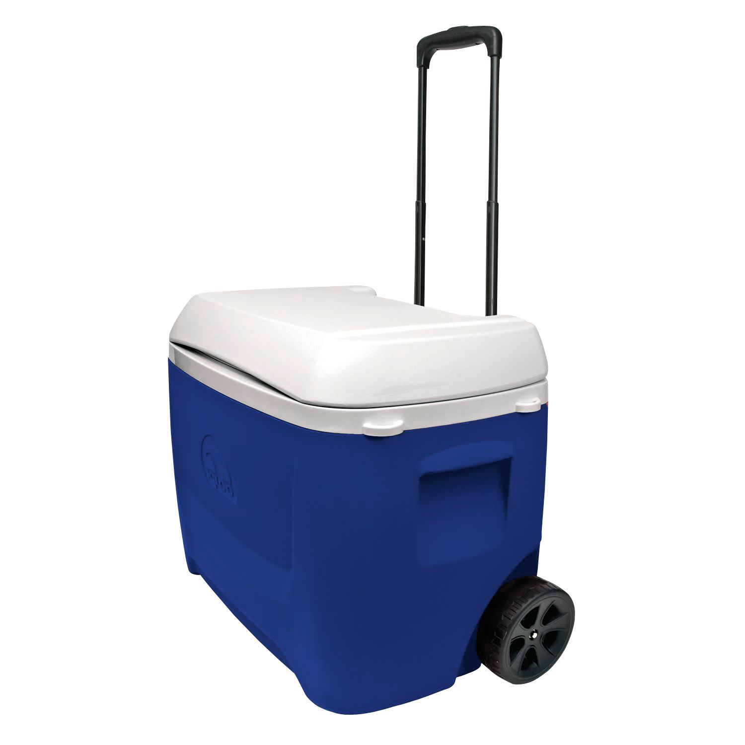 chest coolers u0026 ice chests u0027s sporting goods