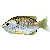 LIVETARGET Sunfish Hollow Body Soft Bait