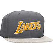Mitchell & Ness Men's Los Angeles Lakers Heather Profile Grey Fitted Hat