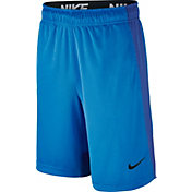 Nike Boys' 10'' Dry Fly Shorts