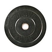 RAGE 45 lb. Olympic Bumper Plate