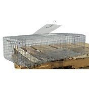 Scott Pet Small Double Door Pigeon Trap
