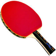 Stiga Master Series Optima Indoor Table Tennis Racket